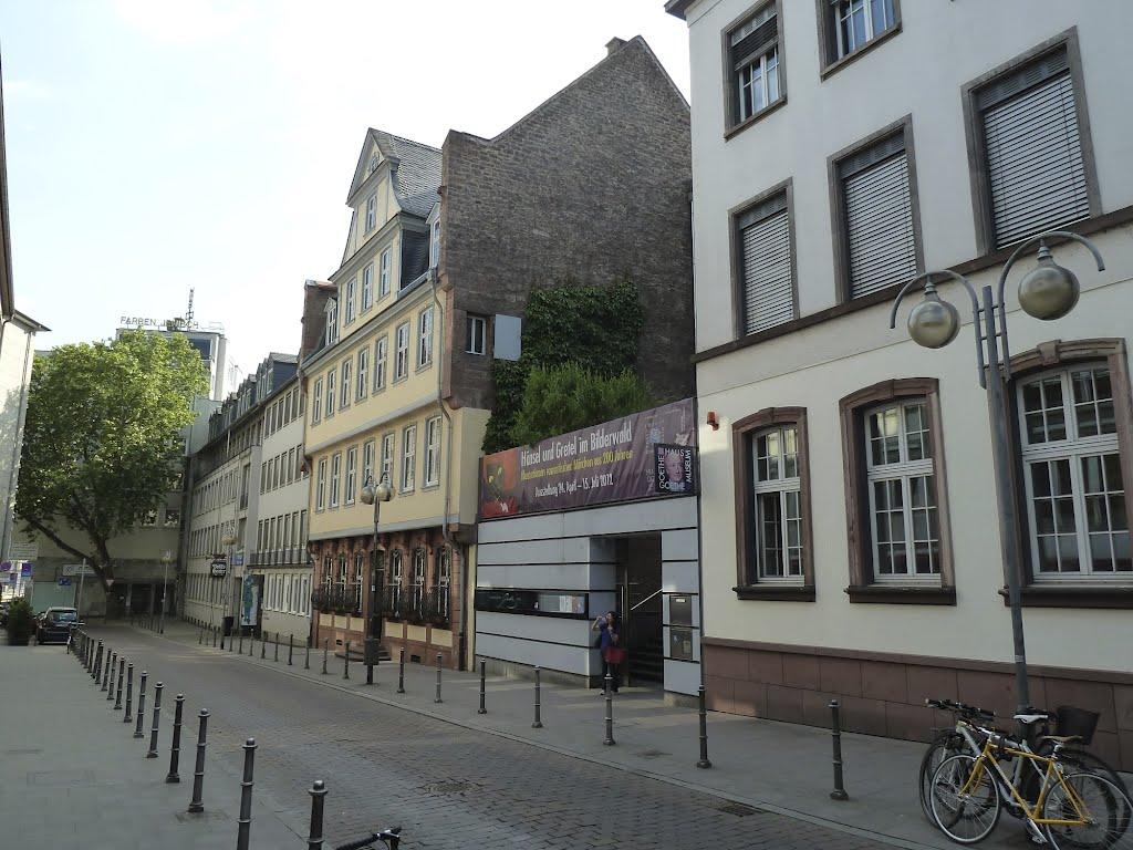 Goethe y su curiosa casita Guia de Alemania