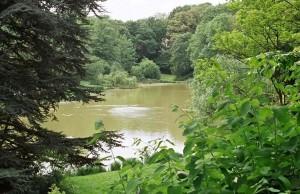 Parques en Colonia