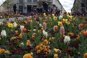 Primavera en Múnich.