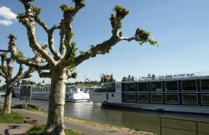 Pasear en barco por el río Rin de Alemania