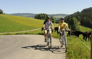 Ruta del ameno valle del Tauber