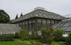 Jardín Botánico de Berlín (Botanischer Garten Berlin)